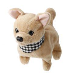 Hund mit Sound, laufend, Chihuahua