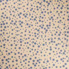 Geschenkpapier Stern, natur, blau, 5 x 1 m