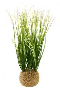Grasbüschel mit Wurzelballen, grün
