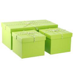 3er Set Geschenkkarton mit Kordel, hellgrün