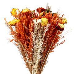 Strauß Strohblume in Papier, orange