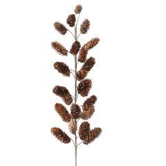 Zweig Zapfen, Natur, 55 cm